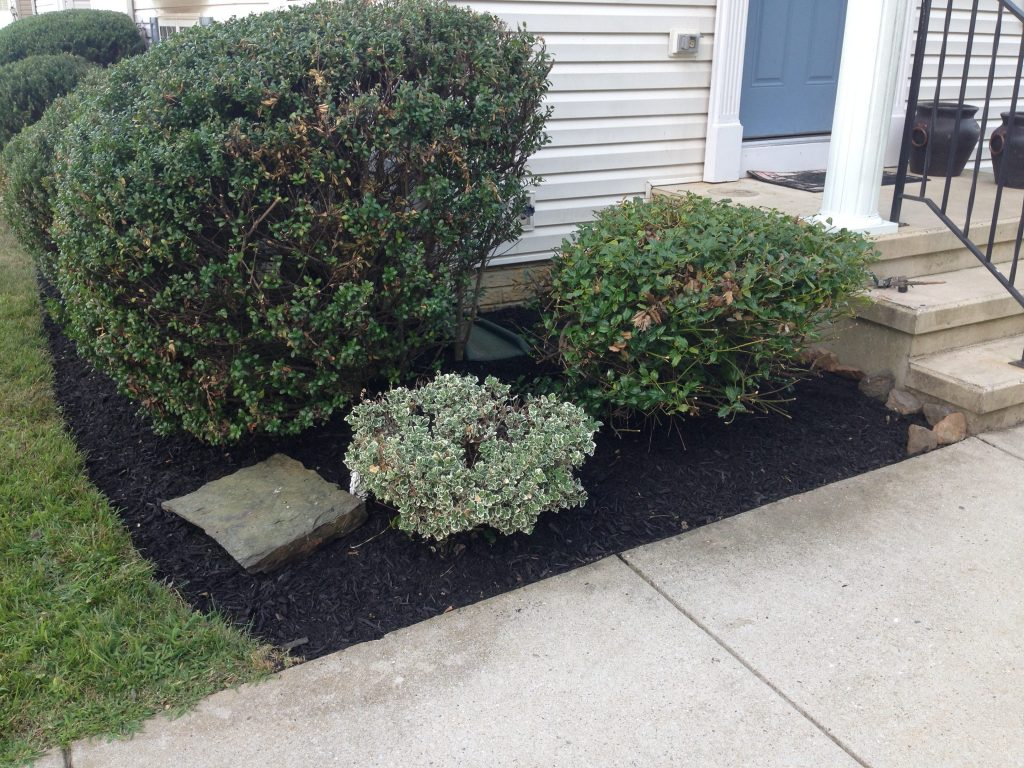 maryland landscaping services