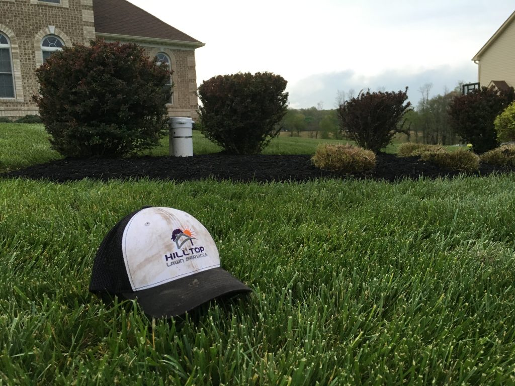 westminster lawn mowing and lawn care company