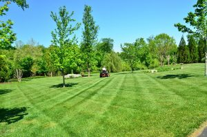 Recurring Lawn Mowing Service in Westminster, MD