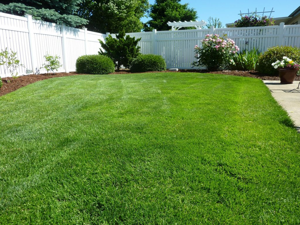 westminster lawn care service